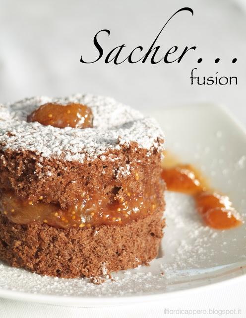sacher-fusion-FDC-1