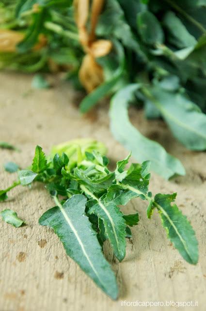 broccolo fiolaro di creazzo