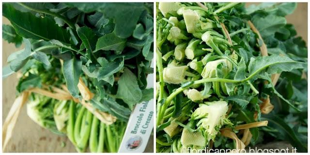 broccolo fiolaro