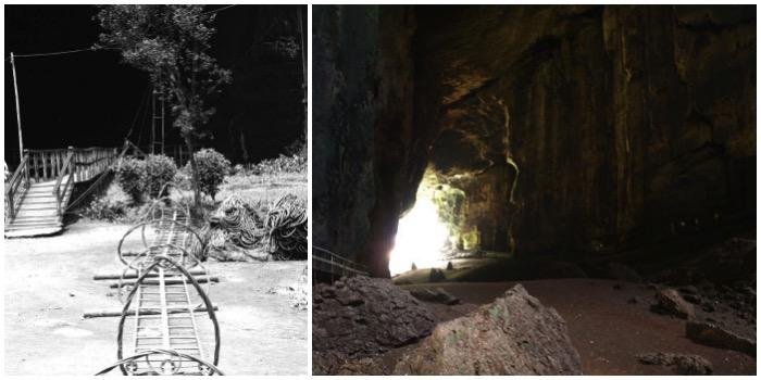 Gomantong Caves