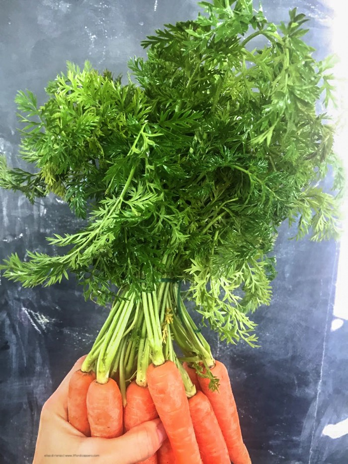 foglie_carote