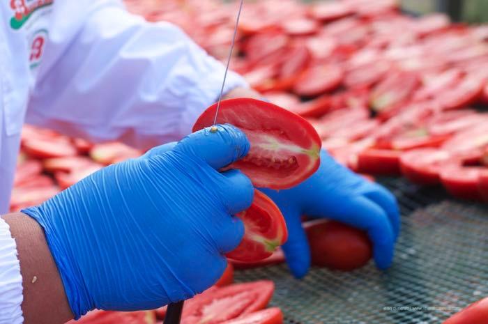 tagli-pomodori