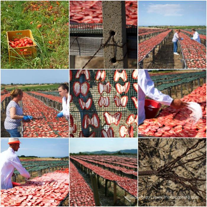 pomodori-secchi -di-calabria