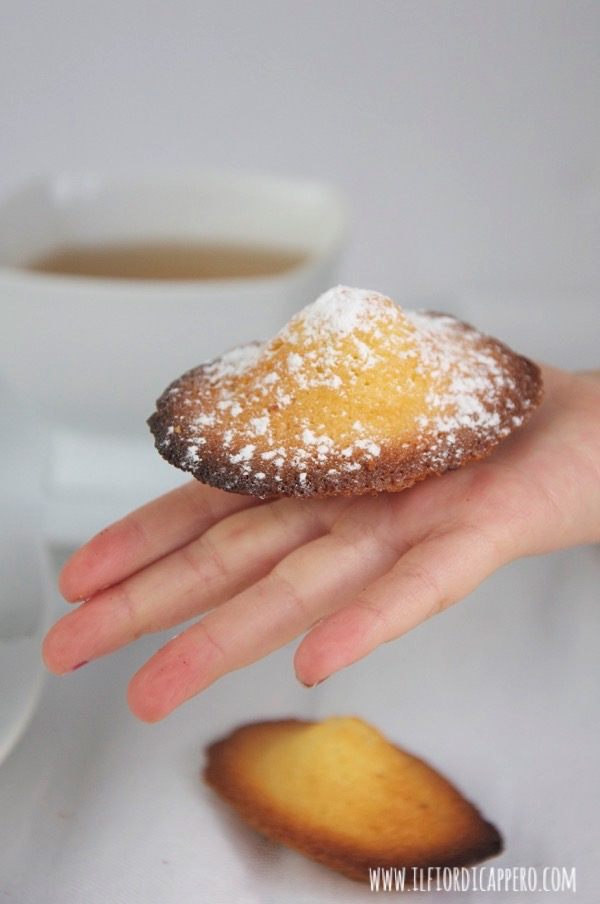 le-madeleines-di-proust