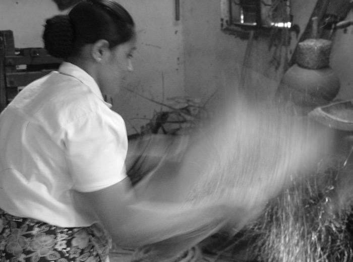 il riso-cocco