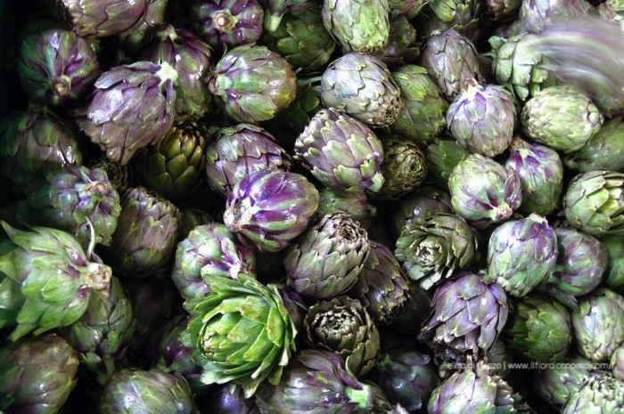il carciofo brindisino-violetta