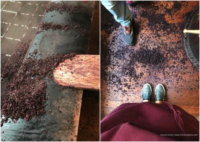 pulizia delle vinacce