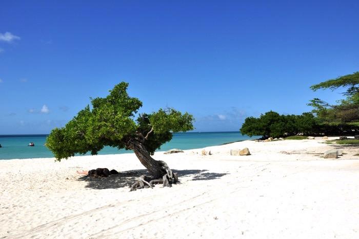 aruba -eagle beach