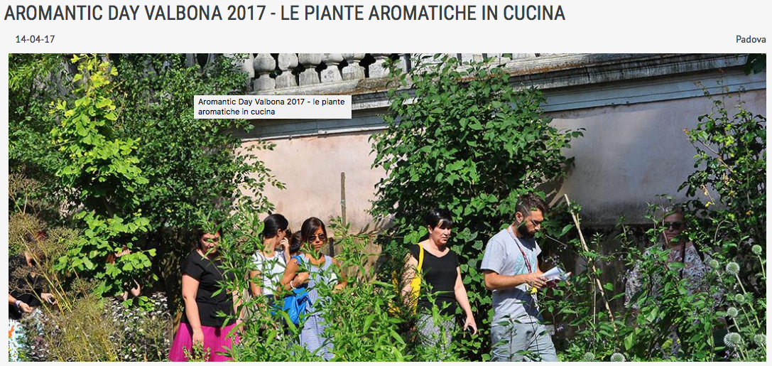 #Aromanticday  erbe aromatiche in cucina a Padova