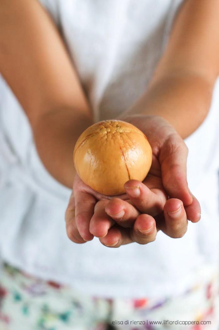 seme nocciolo avocado