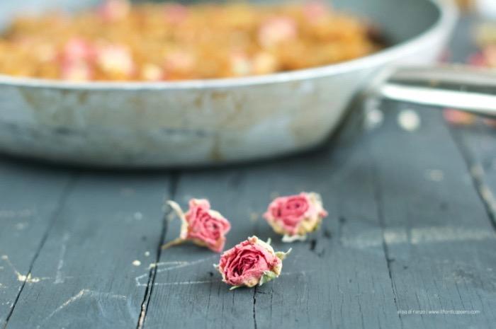 branzino-harissa-rosa