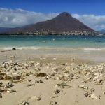 Mauritius, l'isola verde