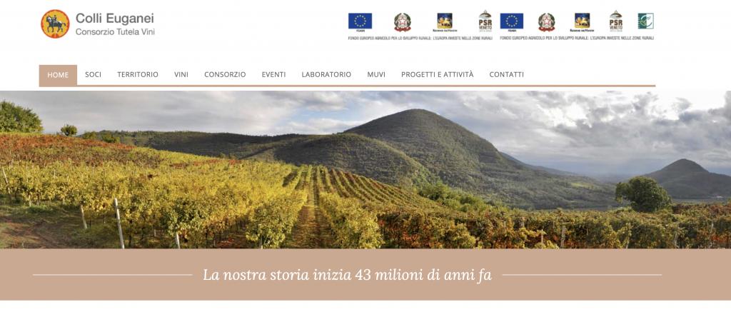 consorzio vino dei Colli Euganei
